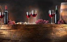 czechy-palavskie-winobranie-w-mikulovie-1-3-dni