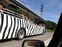 safari_zoo_kralove1
